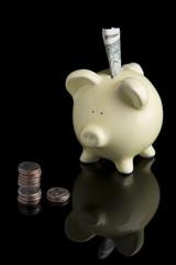 Piggy Bank 1034