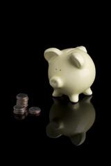 Piggy Bank 1035