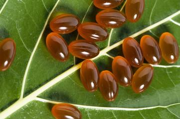 Omega 3 capsules on a leaf, close-up