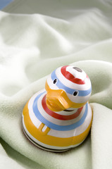 Rubber duck, close-up