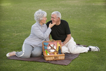 Senior Couple Picnic