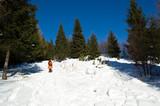 winter mountain trekking poster