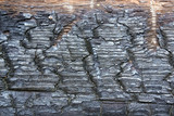 Charred wood poster