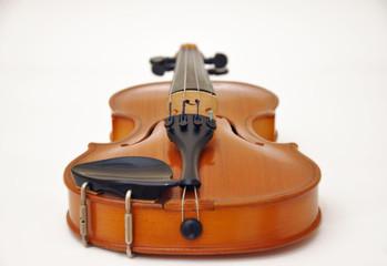 Violino in posa