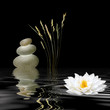 Zen Symbols - 10925882