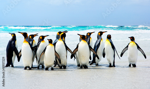 Deurstickers Pinguin Kings of the Beach