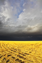 The storm in a countryside begins