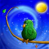 bird await date poster