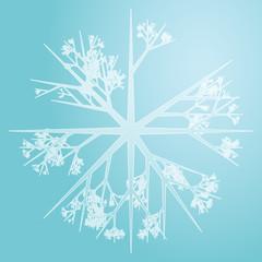 Snowflake illustration