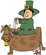Leprechaun Riding A Cow