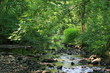 Stream in New Castle - 10996080