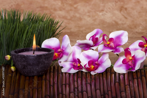 Spa candle and orchid flowers