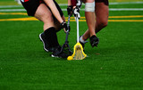 Lacrosse fight for the ball poster