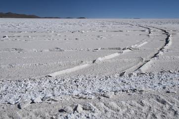 Vehicle mark on salt lake