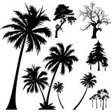Fototapety tree silhouettes vector