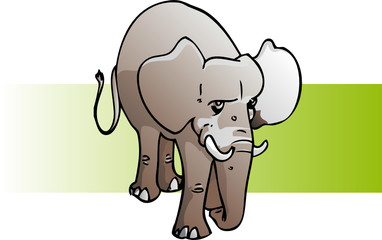 elephant en pied
