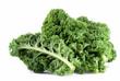 Kale - 11060008