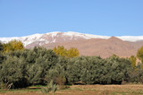 Atlas mountains in Morocco, Africa poster