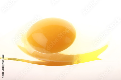 egg white and yolk