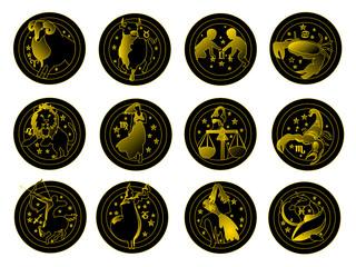 12 segni oro e nero
