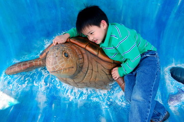 boy and sea turtle