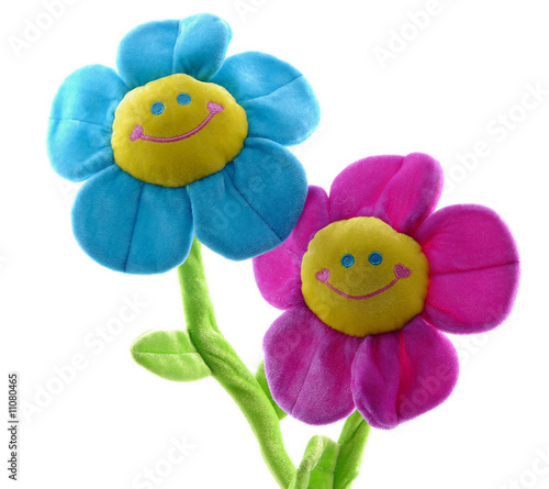 Two happy colorful flowers smiling together isolated on white