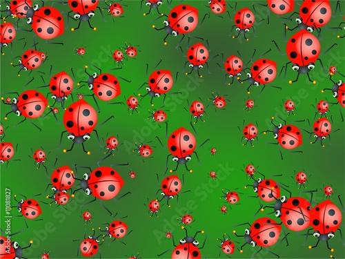 Canvas Lieveheersbeestjes ladybug wallpaper