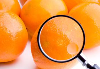 Orangen unter der Lupe