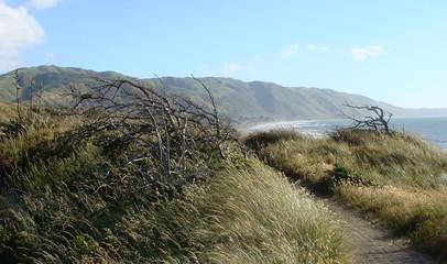 coastal views-Kapiti Coast2-New Zealand