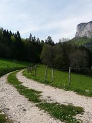 chemin de campagne en chartreuse dans les alpes