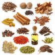 Spice collection isolated on white background - 11096696