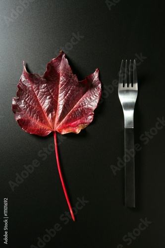 poster of Metaphor, healthy diet low calories colorful vegetarian