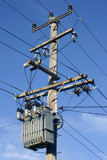 A pole mounted distribution transformer and HV power line poster