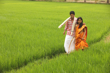 asian couple in a paddy field