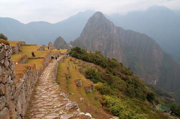 Ancient road to Machu Picchu