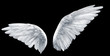 Leinwanddruck Bild - angel wings