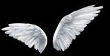 Fototapety angel wings
