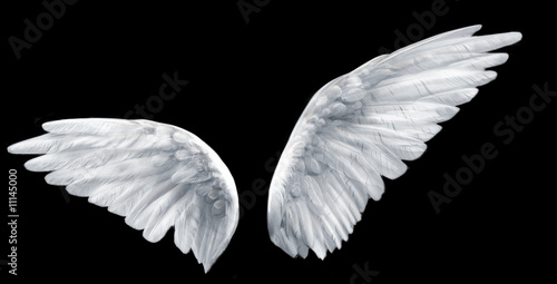 Leinwanddruck Bild angel wings