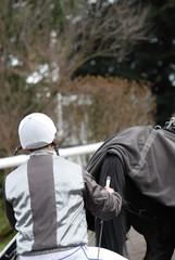 driver et son cheval