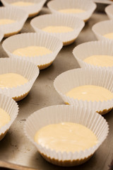 Rows of unbaked cup cakes lined up