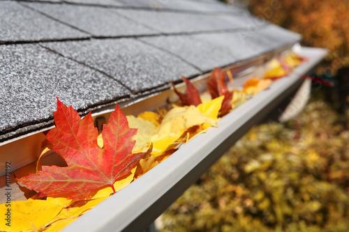 Leinwanddruck Bild Rain Gutter full of leaves
