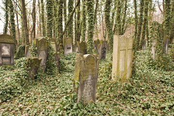 Old Jewish Cemetery in Lodz, Poland