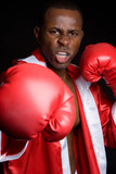 Aggressive Boxer poster