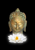 Buddha, Symbol of Purity poster