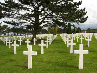 Crosses at American Cemetery in Normandy