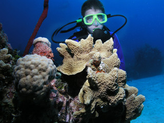Young scuba diver next to coral head