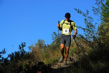 Trail en course à pied