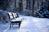Fototapety verschneite Parkbank