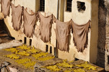Animal skins drying in a tannery, Fes Morocco poster