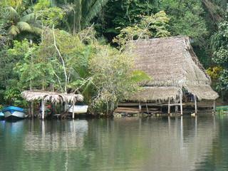 Habitation de pêcheurs (Rio Dulce - mangrove / Guatemala)